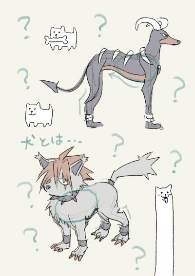ヘルガー・クール・うざい犬/犬の練習